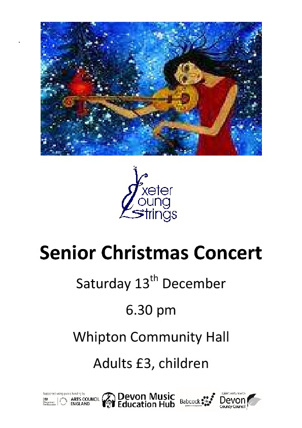 Senior Christmas Concert poster 2014 Copy